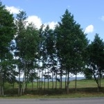 земля в латвии
